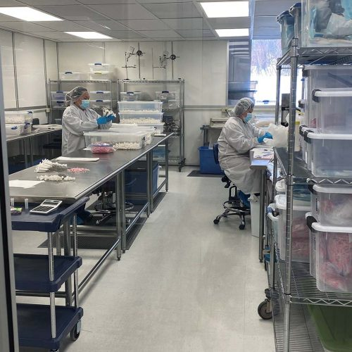 Carbon Medical Technologies Clean Room